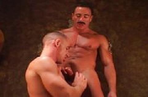Zwei sehr muskulöse schwule Männer befriedigen sich gegenseitig mit dem Mund